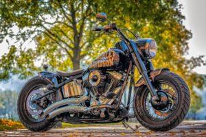 Black Harley Davidson bike.