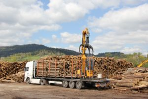 Logging truck being loaded.