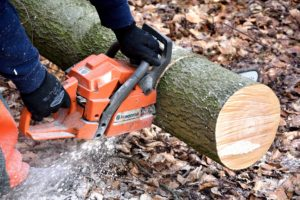 Chainsaw cutting wood.