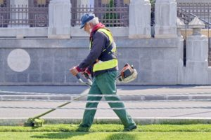 Man weed whacking a lawn.