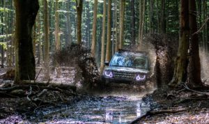 SUV driving through a watery forest.